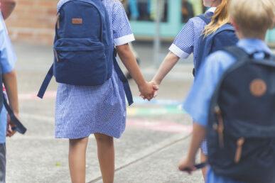 School inclusion program Image