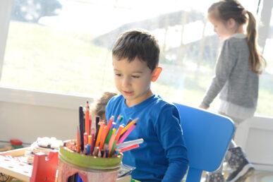 Donate to Autism SA Image